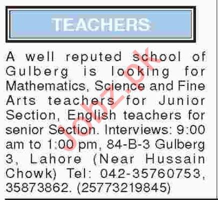 Art Teachers for Junior Section