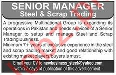 Steel Manager for Progressive Multinational Group