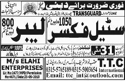 Steel Fixers and Labors Job in Transguard Group