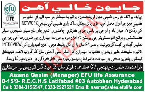 Efu Life Assurance Ltd Jobs Sales Manager & Consultants