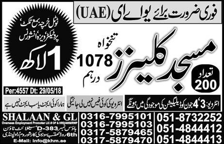 Mosque Cleaners Job in  UAE