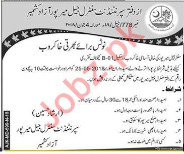 Superintendent Central Jail Mirpur Azad Kashmir Office Jobs