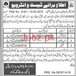Balochistan Services Tribunal High Court Jobs