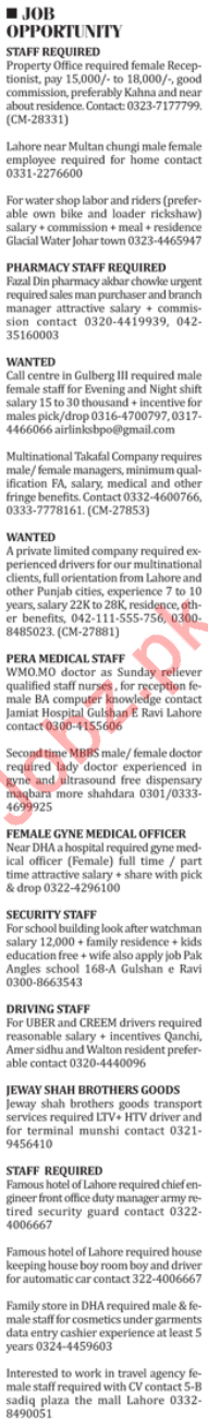 Receptionist, Labors, Riders, Pharmacist, Doctor, Guard Jobs