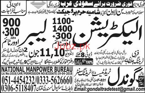 Electricians and Labors Job in Saudi Bin Ladon Group