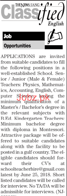 Male / Female  Junior Teachers Job Opportunity