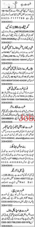 Security Incharge, Information Officer / Admin Officer Wante