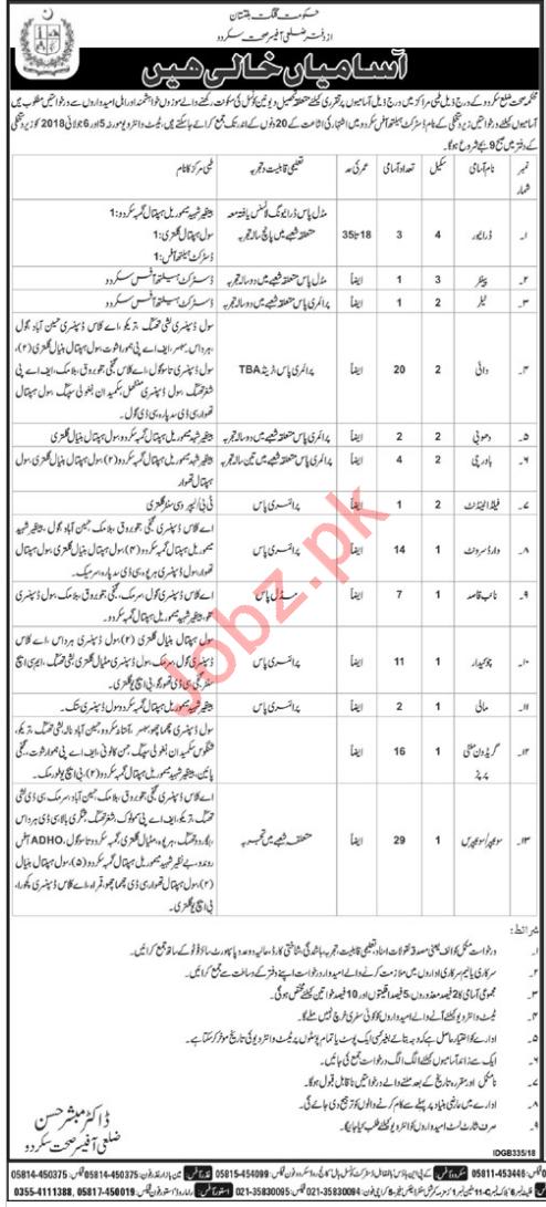 District Health Office Skardu Gilgit Baltistan GB Jobs 2018
