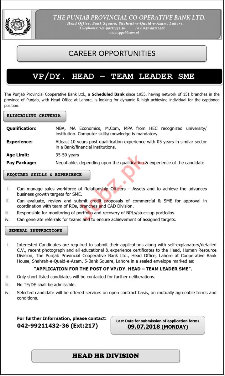 Vice President, Deputy Head - Team Leader SME Job 2018