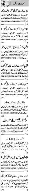 Accountant, Receptionist, Manager, Clerk, Office Boy Jobs