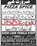 Call Operators, Bike Riders, Kitchen Staff Job in Pizza Spic