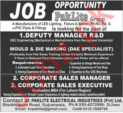 Deputy Manager for Paklite Electrical Industries Pvt Ltd