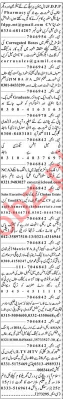 Salesman, Driver, Pharmacist & Graphic Designer Jobs