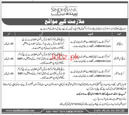 Sindh Bank Limited Branch Managers Jobs
