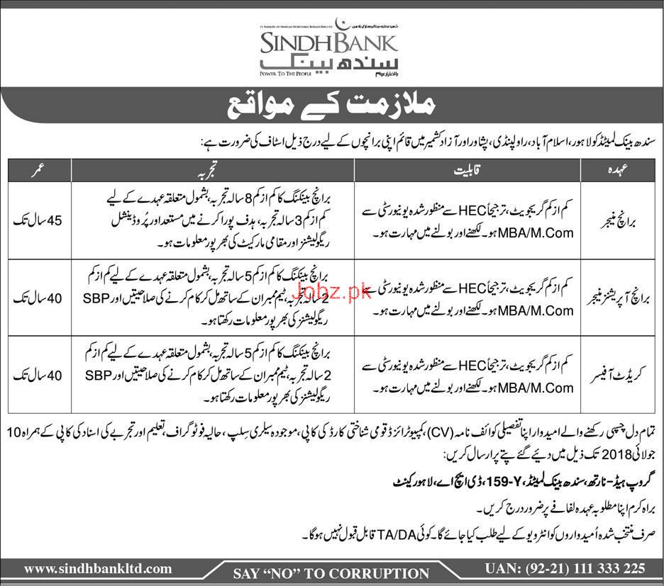 Sindh Bank Limited Branch Managers, Credit Officer  Jobs