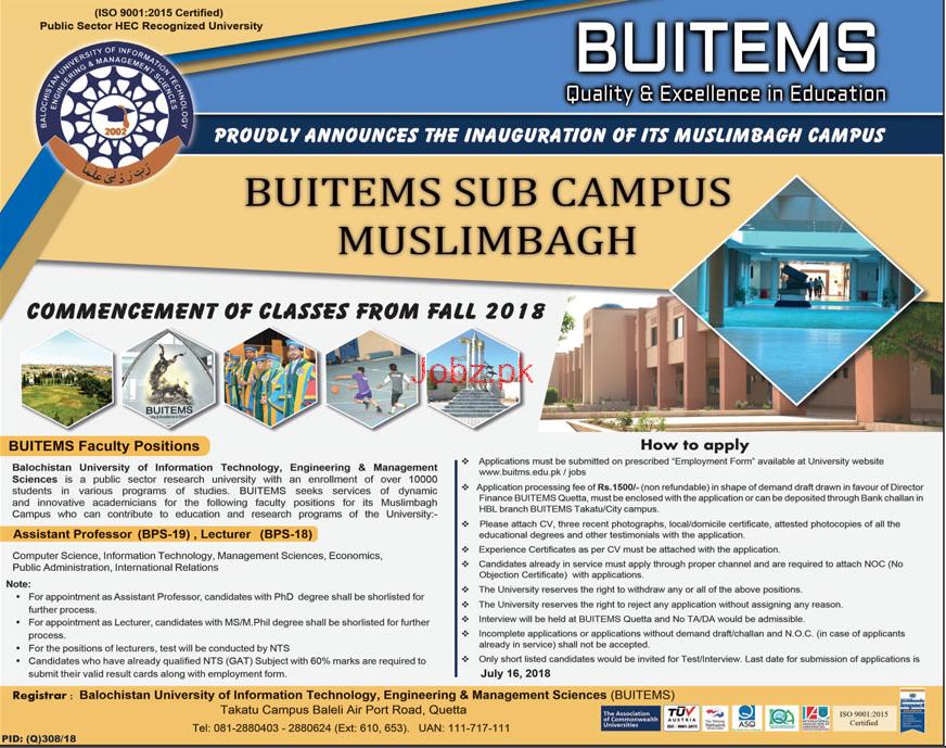 Balochistan university of Information Technology BUITEMS Job