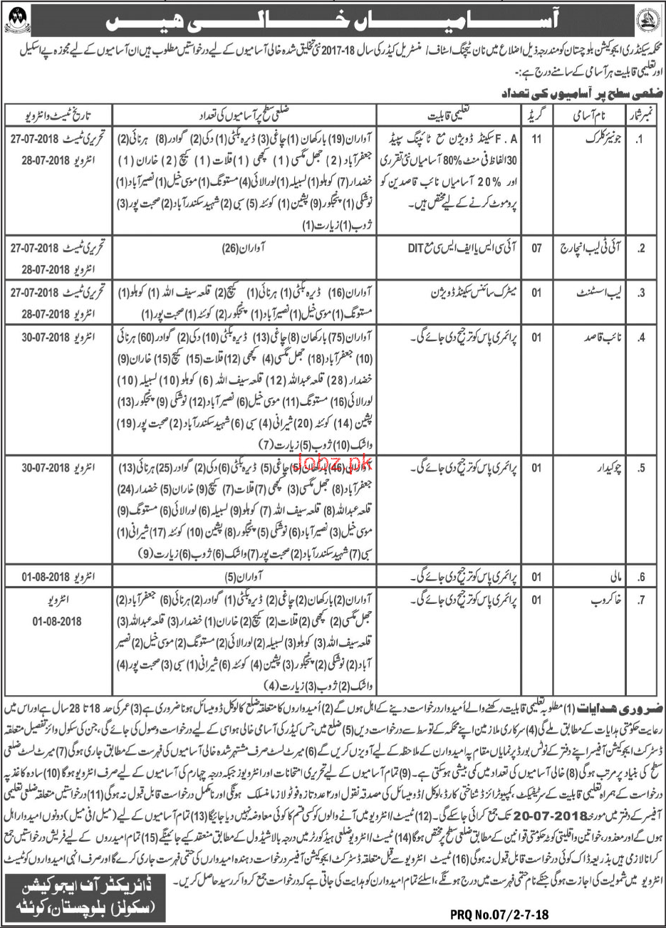 Elementary And Secondary Education Department Balochistan Jobs 2019