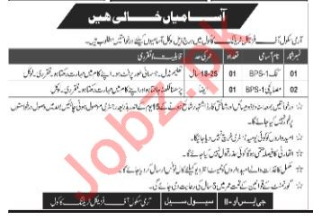 Army School of Physical Training Kakul Abbottabad Jobs 2018
