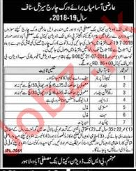 BS Link Division Canal Bank Mustafabad Lahore Jobs 2018