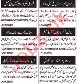 Sales & Marketing Staff Jobs 2018