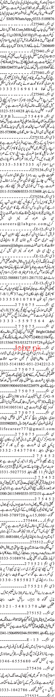 Marketing Staff, Accountant, Assistants Job Opportunity