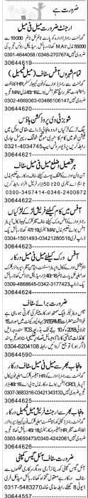 Telephone Operators, Accountant Job Opportunity