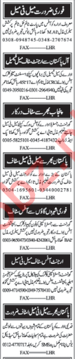 Marketing & Sales Staff Jobs 2018 in Lahore