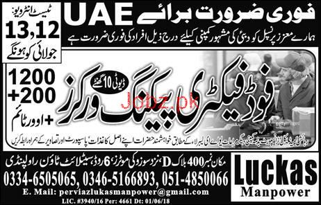Food Factory Packing Workers Job Opportunity