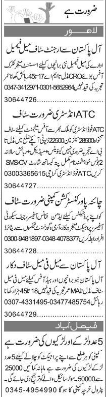 Assistant Managers, Clersk, Office Boys Job Opportunity