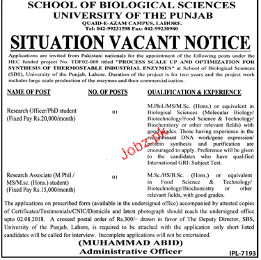 University of the Punjab Research Officer jobs