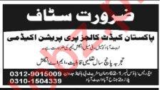 Pakistan Cadet College Preparation Academy Abbottabad Jobs