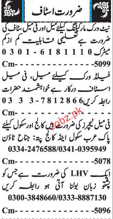 Male / Female Staff,  Male / Female Field Staff Wanted