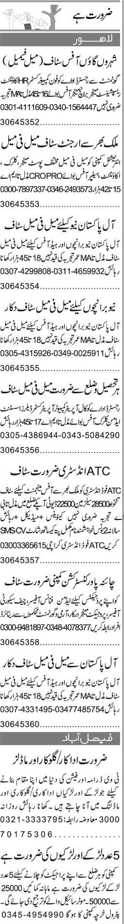 Telephone Operators, Accountant Job Opportunity