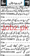 Male Accountant, Male Teachers, Female Teachers Wanted