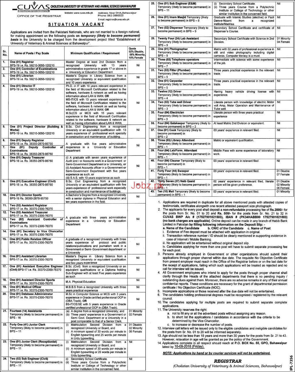 Cholistan University of Veterinary and Animal Sciences Jobs