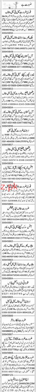 Salesmen, Sales Officers, Accountant Job Opportunity