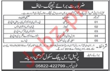 Haq Nawaz Kayani Shaheed Army Public School APS AJK Jobs