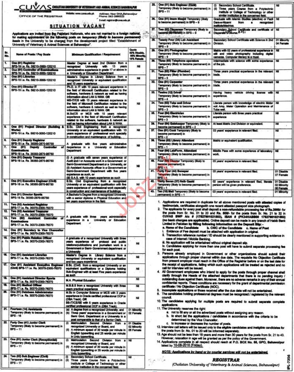 CUVAS Cholistan University of Veterinary Bahawalpur Jobs