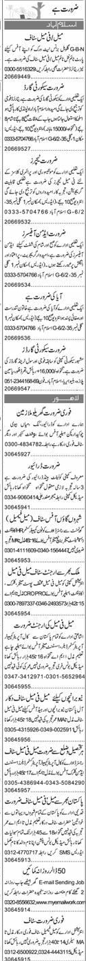 Security Guards, Male / Female Teachers Job Opportunity