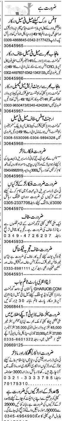 Call Operators, Assistant Admin Manager Job Opportunity