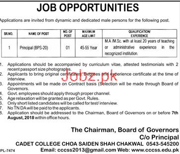 Cadet College Choa Saiden Shah Principal Jobs