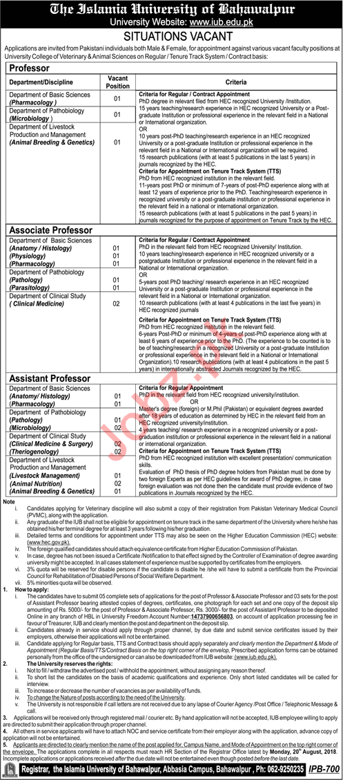 Jobs at Islamia University of Bahawalpur IUB