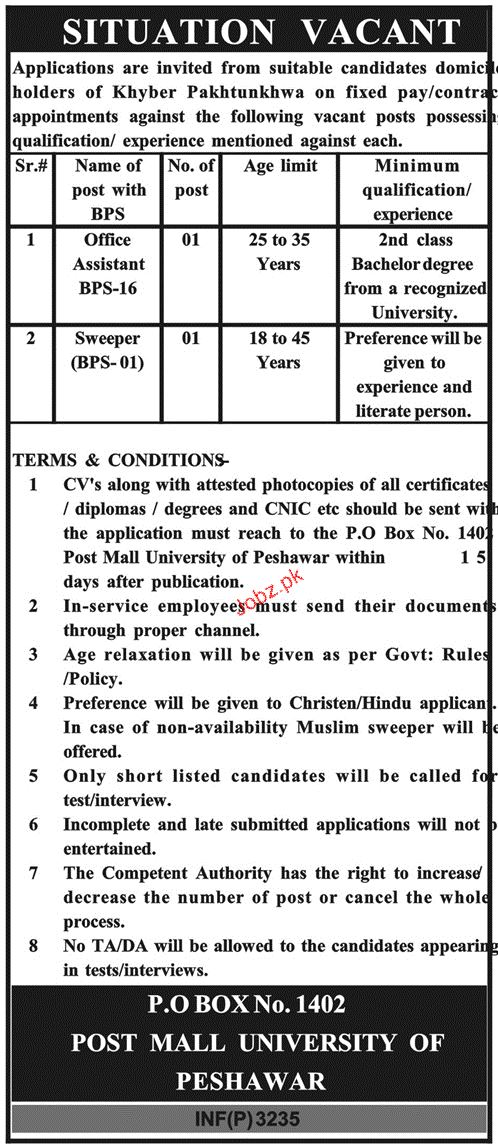 Office Assistants and Sweepers Job in Government of KPK