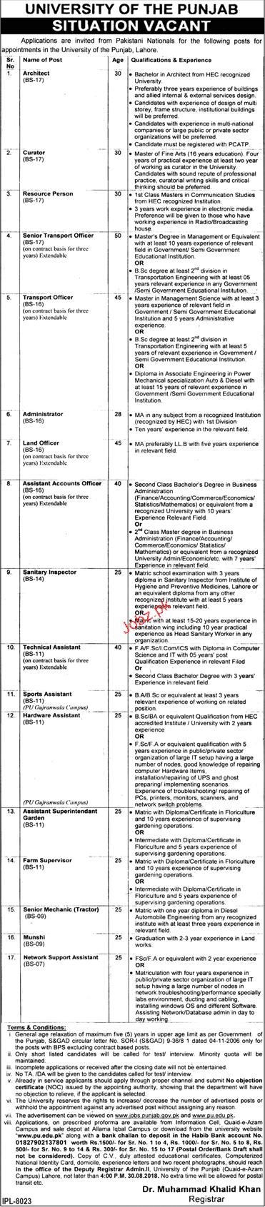 University of the Punjab Architects, Curator Jobs
