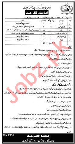 Municipal Corporation Gujrat Punjab Jobs 2018 2019 Job