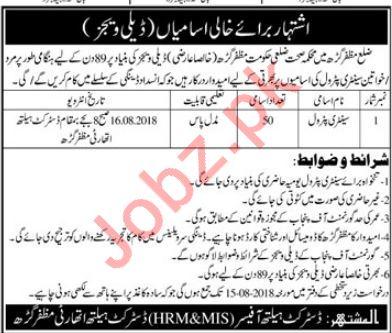 Health Department Muzaffargarh Jobs 2018 Sanitary Petrol