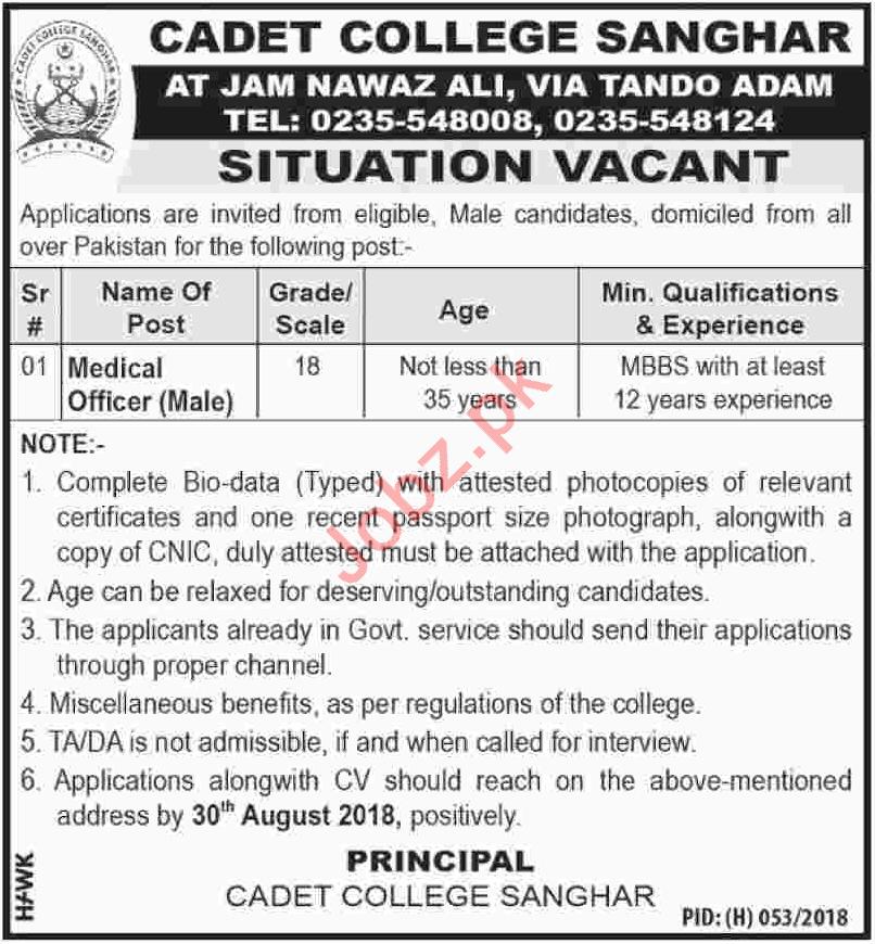 Jobs at Cadet College Sanghar