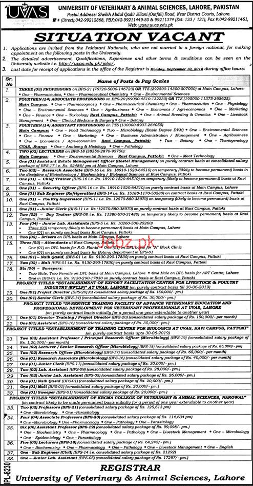 University of Veterinary and Animal Sciences UVAS Jobs 2018 Jobs Pakistan
