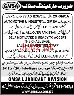 GMSA Lubricant Division Marketing Staff Jobs