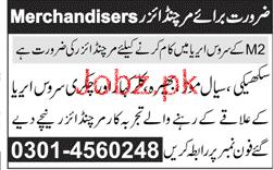 Merchandisers Job Opportunity